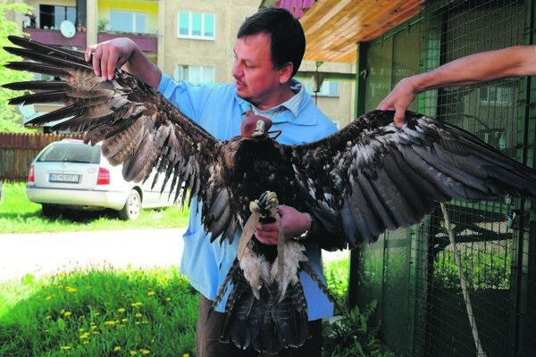 Vet Ladislav Šimák with his rare patient.