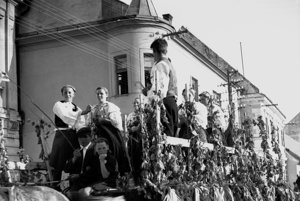 The grapes harvest of September 23, 1945 in Modra