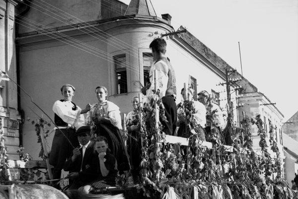 The grapes harvest of September 23, 1945 in Modra