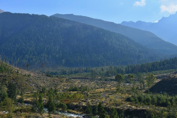 I haven't had the heart to hike again in the Tatras after the 2004 windstorm.