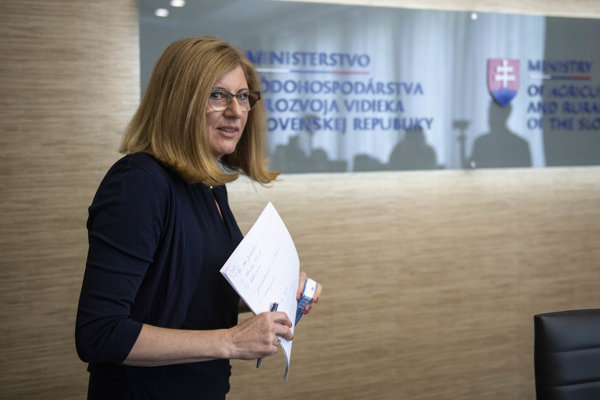 Agriculture Minister Gabriela Matečná