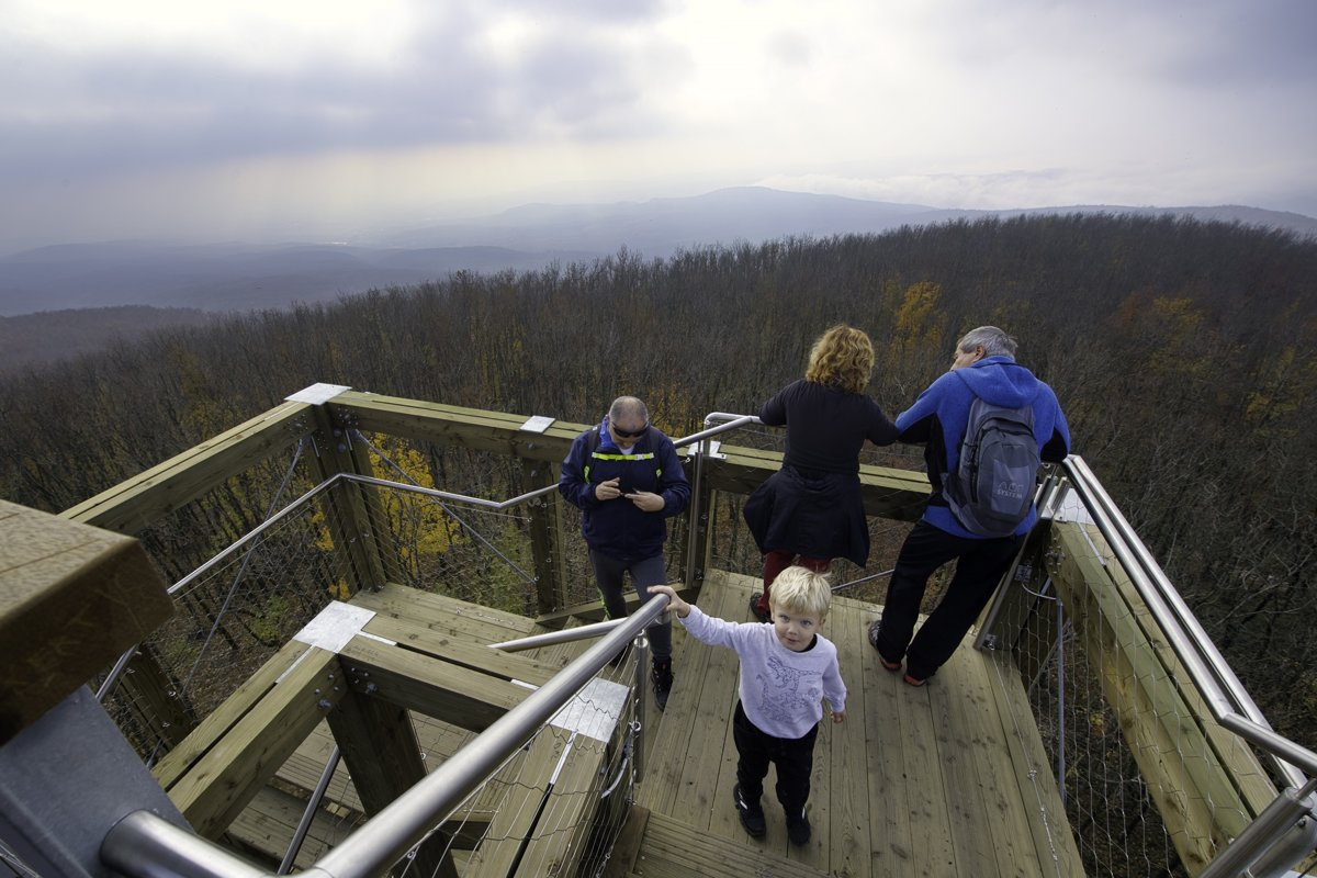 76196aa1a777 New lookout tower will be 40 metres high and offer the most spectacular  views