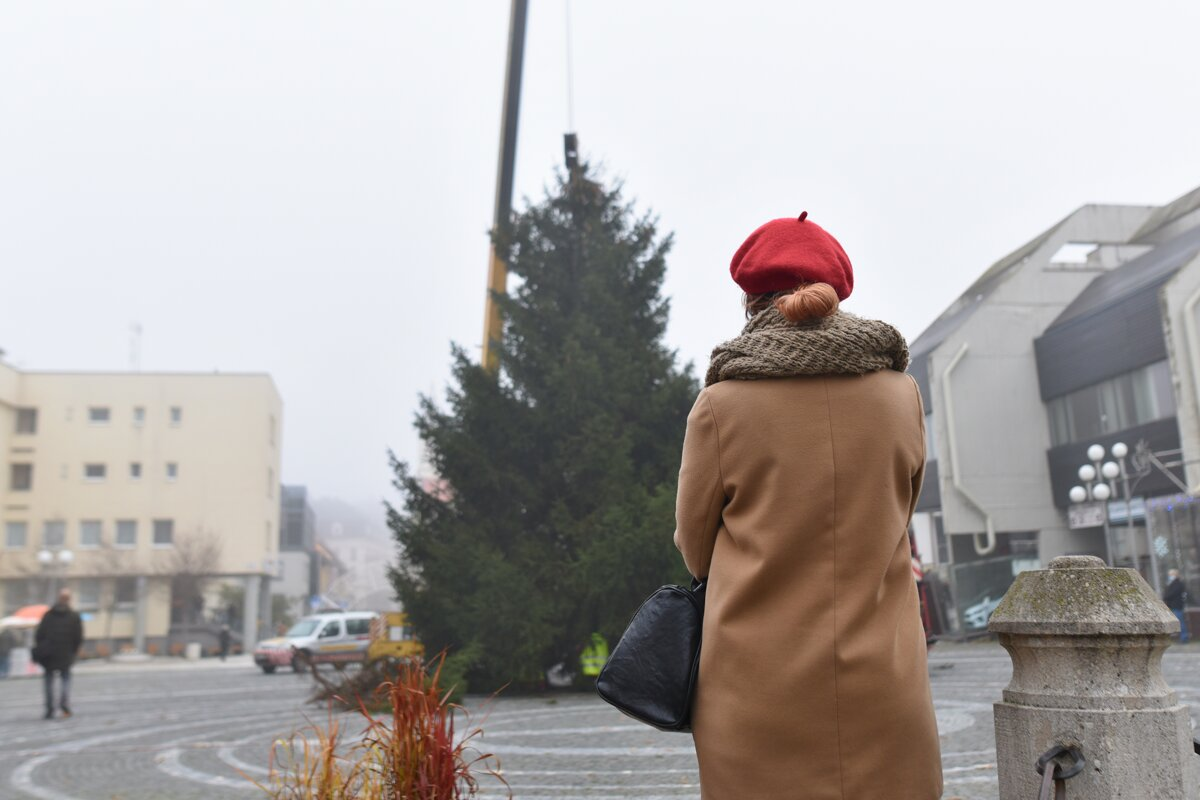 Installation of Christmas tree in Trnava