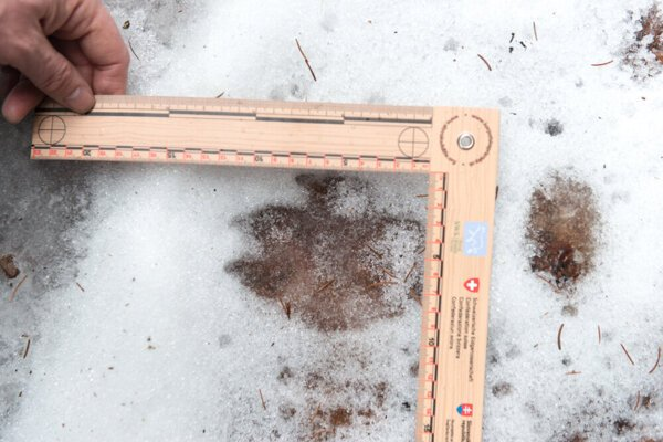Measuring the wolf's traces