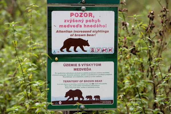 Warning concerning bears are becoming frequent.
