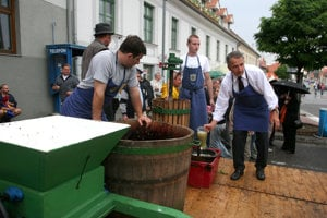 Grape harvesting and wine-making is a ritual.