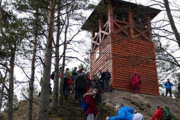 Strečno lookout tower on the Špicák hill.