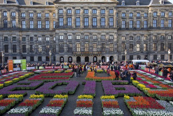 "Crates with tulips in a pattern reading EU 2016 laid out on Dam Square to mark the Dutch six-month EU presidency on the fifth national ""tulip day' in Amsterdam."