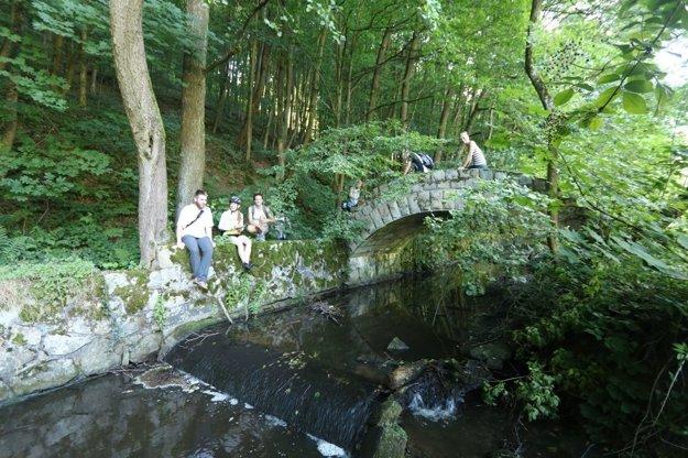 A romantic bridge in forests of Nové Mesto