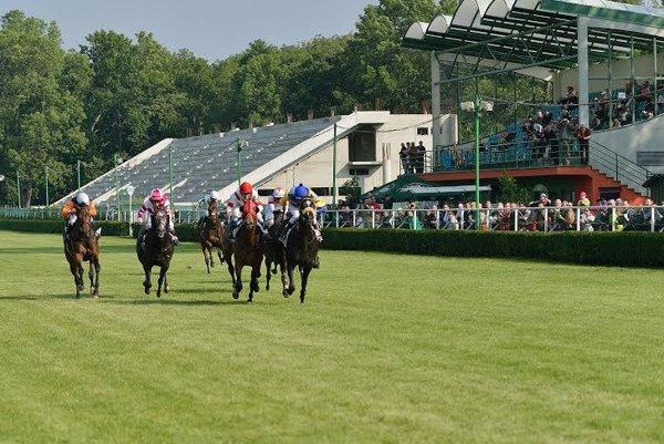 Horserace in Bratislava