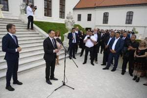 A commemorative event to pay tribute to the Roma Holocaust victims was held at Bratislava Castle. MEP Peter Pollák speaking in the picture.