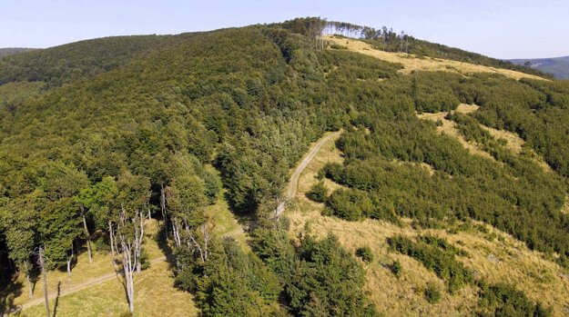 The Štefánik long-distance cycle route offers spectacular views of the Small Carpathians.