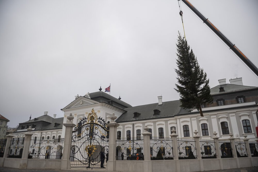 The Presidential Palace now has a Christmas tree.