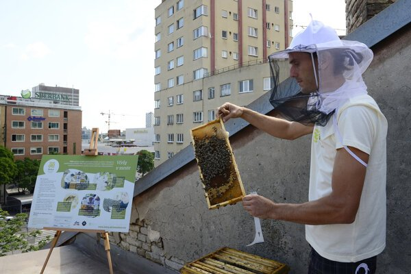 Installing of the beehive on the roof of Stará Tržnica in the very centre of Bratislava.