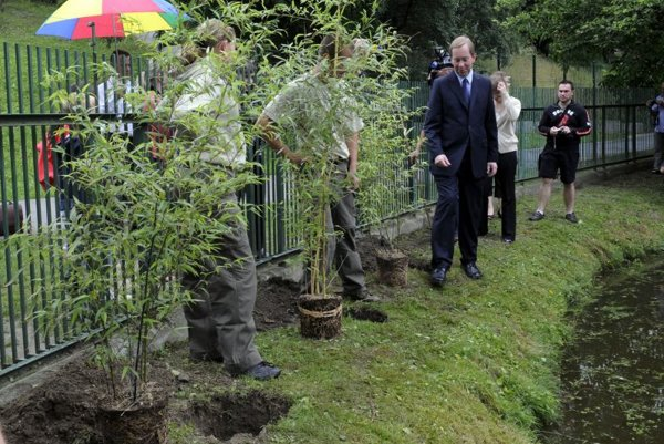 British Ambassador Michael Roberts (right) planted new bamboo trees at Bratislava Zoo to help the envrionment.