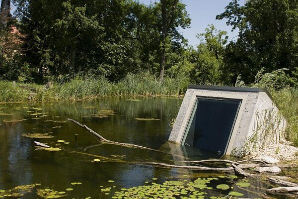 Donau-Auen National Park's submerged observatory lets visitors see life beneath the surface of a Danube River tributary.