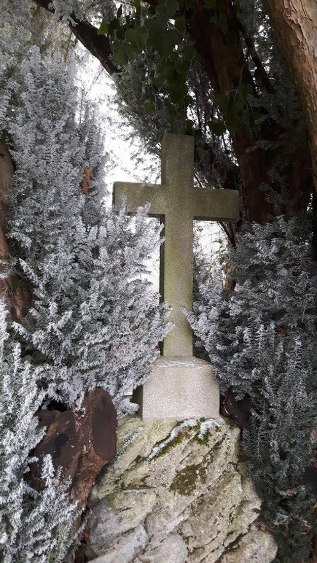 Kozia Brána Cemetery on Šulekova Street.