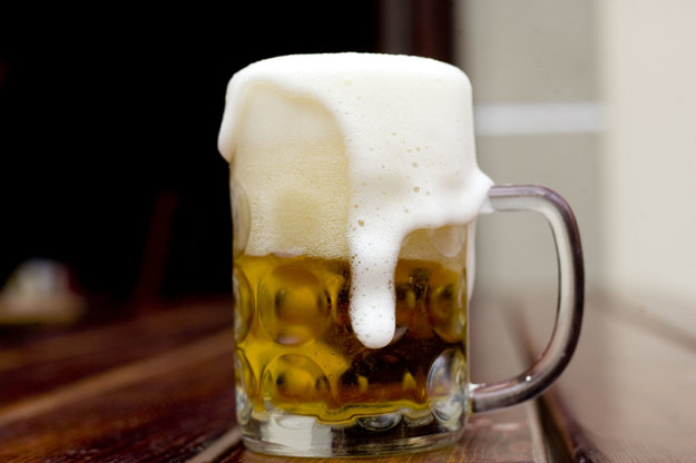 Pivobrana - Beer Festival