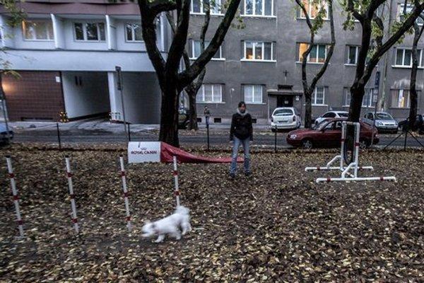Dog park on Poľná Street