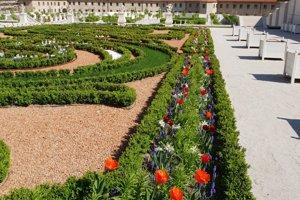 Garden - Bratislava Castle