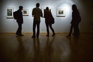 A night in a gallery