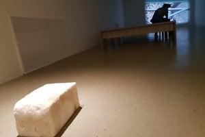 Eastern Sugar exhibition in Kunsthalle