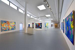 Exhibition of C.-H. Pedersen, Danubiana