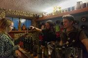 Wine tasting in Pivnica u Štefana in Devín.