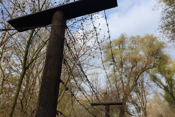 The barbed wire used to be charged with lethal high voltage.
