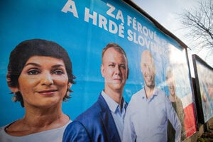 The coalition of non-parliamentary parties Progressive Slovakia/Spolu has the most transparent campaign.