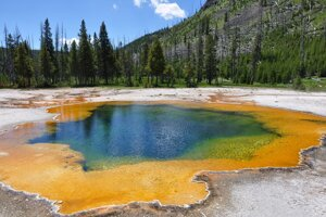 A hot spring in the Yellowstone National Park.