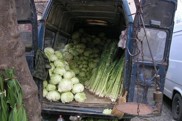 Would you like some healthy vegetables?