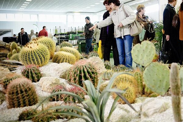 'Hobby' fairs like flower shows are increasingly popular in Slovakia.