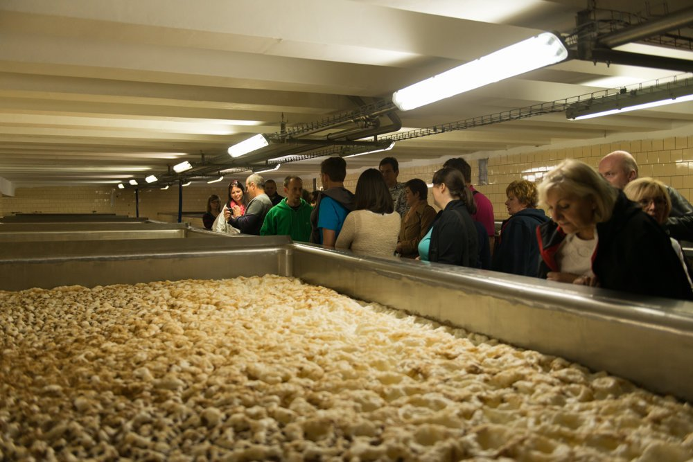Fermentation of beer in open tanks.