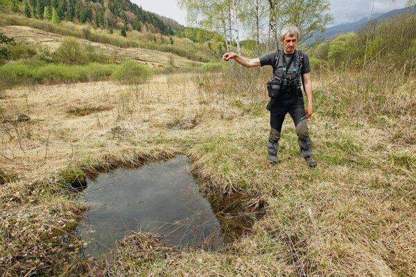 Topercer in the Rojkov peatland.
