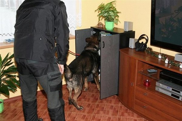 Dogs are widely used also by Slovak police.