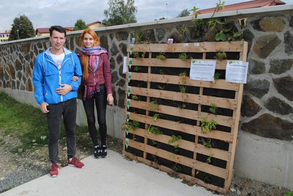 Matej, Barbora and their public herbal garden