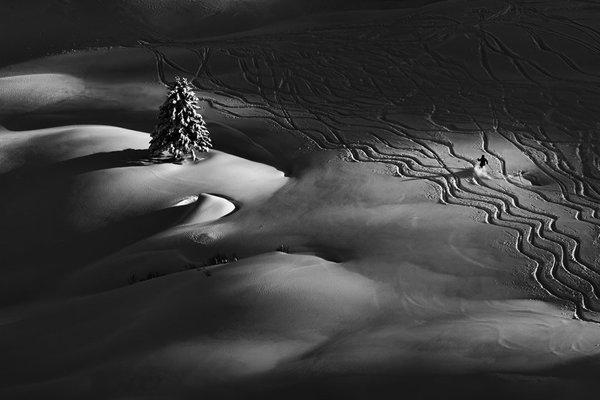 Sony World Photography Awards 2016, Slovak national winner: Peter Svoboda - Passing By