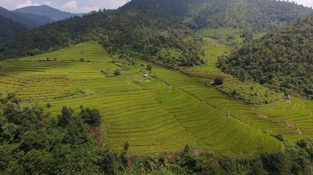 Barma.