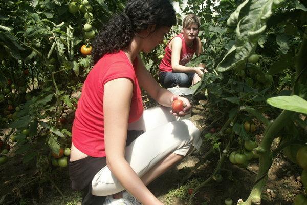 Fakulta agrobiológie a potravinových zdrojov SPU v Nitre kladie dôraz aj na ekológiu a ekologické poľnohospodárstvo