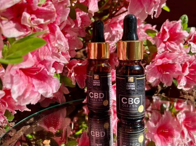 Predovšetkým CBD aCBG oleje sú uzákazníkov aktuálne veľmi obľúbené.