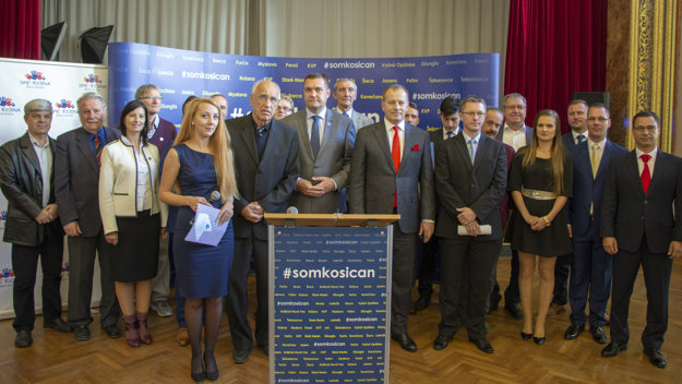 Tri demokratické strany majú dokopy 30 kandidátov na poslancov mestského zastupiteľstva.