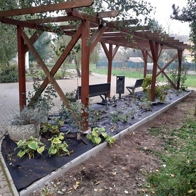 Projekt Voda a život - suchá záhrada v Komoči