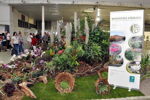 Botanická záhrada SPU v Nitre priniesla do pavilónu F svoje tradičné výstavné exponáty, ako sú sukulenty, tropické aj subtropické rastliny, okrasné aj kvitnúce, antúrie, orchidey, tilandsie...