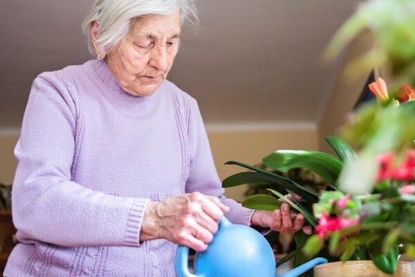 Z prognóz Európskej komisie vyplýva, že v roku 2060 stúpne podiel ľudí vo veku 65 rokov až na neuveriteľných 60 %.