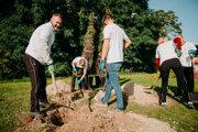 Zamestnanci ŠKODA AUTO SLOVENSKO priložili ruku k dielu a v spolupráci s Magistrátom hlavného mesta Slovenska Bratislavy sadili stromy na Starohájskej ulici v Petržalke.
