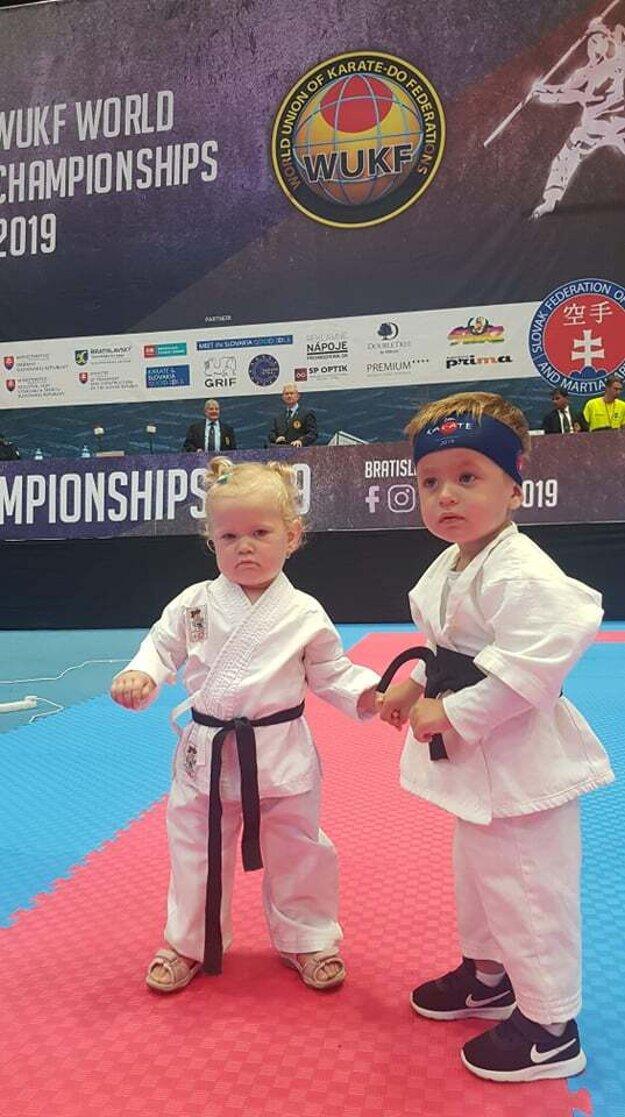Zdroj ŠK Karate Nová Baňa