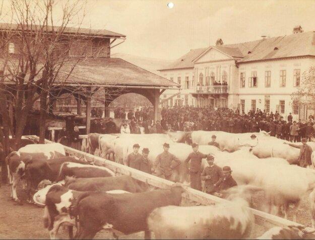 """""""Dobytčák"""" na Trnavskom mýte v roku 1885, vpravo Berchtoldov palác."""
