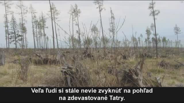 Vysoké Tatry sa postupne spamätávajú