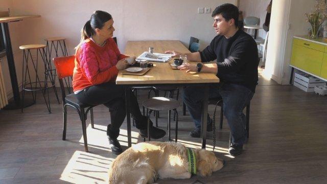 Ako sa má pes správať v kaviarni